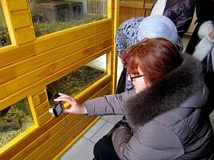 Пенсионеры Екатеринбурга открыли для себя контактный зоопарк