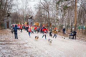 Purina поддержала рождественский «Пушистый забег» в пользу бездомных животных
