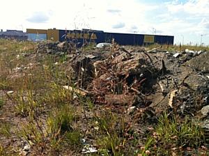 Экологи просят ИКЕА ликвидировать свалку строительных отходов