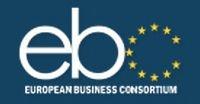 Европейский Бизнес Консорциум: чешские банки готовы финансировать проекты по строительству ТЭЦ в СНГ