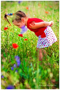 Московский фестиваль цветов: 3–8 июля 2012 в Парке Горького