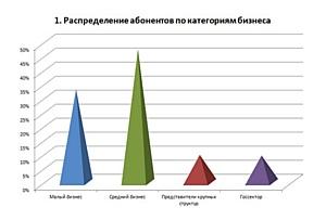 48% абонентов ИАС Seldon являются представителями среднего бизнеса