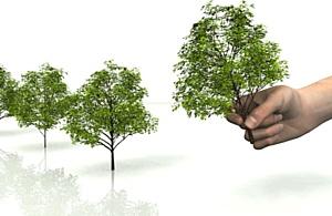 Фонд экологических инвестиций: В судьбе природы - наша судьба