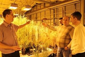 Российские аграрии перенимают лучшие практики Carlsberg group