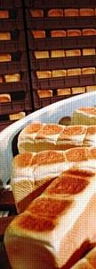 Предприятия, выпускающие Mobil SHC Cibus, прошли сертификацию системы менеджмента безопасности пищевых продуктов