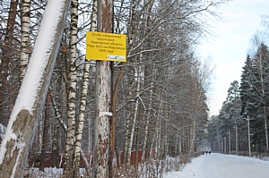 ОНФ обратится в надзорные органы с просьбой проверить законность застройки парков города Иваново