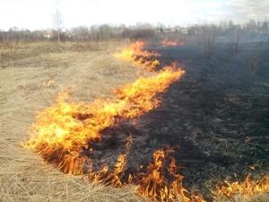 Энергетики поддерживают пожарную безопасность на электросетевых объектах