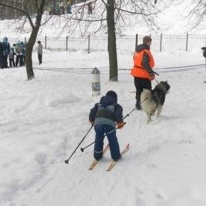 Победители Фестиваля «Крепкий Орешек гостях у Зимы» получат свои призы.