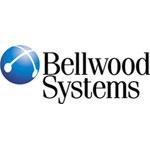 Компания «Белвуд Системз» разработала систему автоматизации работы кредитных брокеров на базе платформы «ИнстантЛоан»