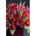5 причин купить себе цветы