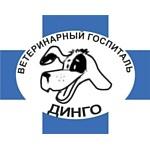 Ветеринарный госпиталь «Динго»: зубной вопрос в животном мире