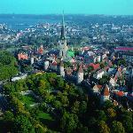В Таллинн приезжает фестиваль «Цирковое дерево»