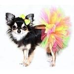 Milagres.ru одежда для собак. Лучший ассортимент по лучшей цене!