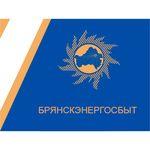 Детский приют получил новогодние подарки от «Брянскэнергосбыта»