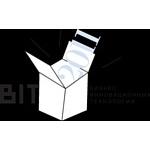 Конкурс БИТ 2011 вышел на федеральную прямую