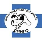 """Ветеринарная клиника """"Динго"""": как следить за здоровьем животных"""