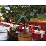 Дегустация критской кухни в ресторане «МинСельХоз»