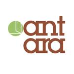 Презентация декоров от компании «АНТАРА»