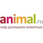 Animal.ru запустил фотоконкурс «КРАСКИ ОСЕНИ»
