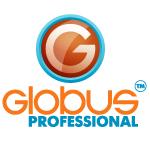 Система экономической безопасности предприятия с Globus