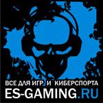 ES-GAMING.RU – проект, который на ходу