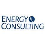 Energy Consulting вошла в 5-ку крупнейших аудиторско-консалтинговых групп России