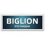 Рейтинг лидеров продаж от Biglion за 2011 год