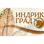 """Художественный фестиваль для всей семьи """"Дикий Художник -2"""""""