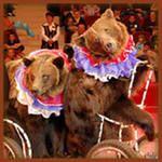 Благотворительный проект «Цирк едет в гости» компании Amway подарил радость детям