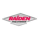 Финансовые итоги деятельности компании RAIDEN в 2005 году