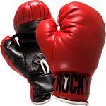 В Казахстане будет возведен первый Центр бокса