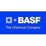 Строительный день BASF в Челябинске