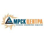 Филиал ОАО «МРСК Центра» - «Смоленскэнерго» принял участие в спартакиаде трудящихся Смоленска