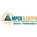 Совещание специалистов технической инспекции и служб производственного контроля и охраны труда ОАО «МРСК Центра» начало работу в филиале Тамбовэнерго