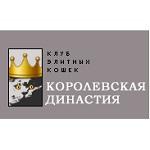 В Новосибирске пройдет международная выставка кошек