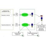 «KEEPCOUNT» Мобильная логистика