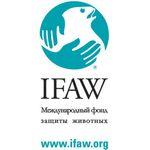 Фонд IFAW и Дарвиновский музей отметят Всемирный день защиты животных