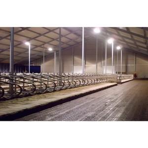 Применение кабеля в сельскохозяйственной отрасли и животноводческих объектах