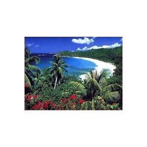 Самостоятельный тур на Канарские острова
