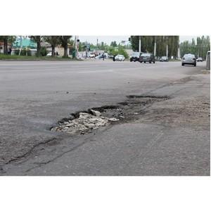 Активисты ОНФ инспектируют состояние дорог, отремонтированных в прошлом году