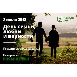 Ко Дню любви, семьи и верности Жители Волгограда могут посадить семейный лес