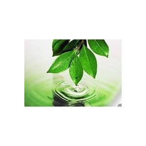 ОАО «Варьеганнефть» реализует комплекс экологических программ.