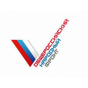 «Молодежка ОНФ» приняла участие в организации спортивного праздника в Вологде.