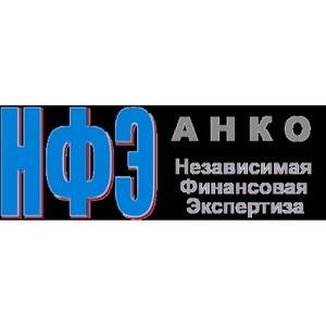 Методика расчета финансовых показателей НКО «Независимая финансовая экспертиза»