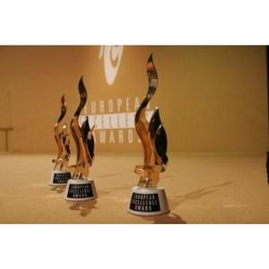 «Михайлов и Партнёры» представят Россию в составе жюри премии European Excellence Awards 2017