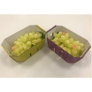 Smurfit Kappa отмечает рост интереса к экологически устойчивой упаковке для продуктов