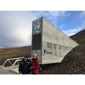 Древние культуры сохранят в Арктике