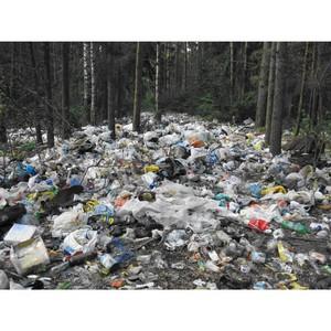 В Воронежской области загрязнены и отравлены земли сельскохозяйственного назначения