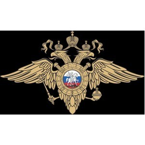 Сотрудники полиции по району Крюково г. Москвы задержали подозреваемого в кражах