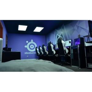 SteelSeries сообщает о начале эксклюзивного сотрудничества с командой Winterfox
